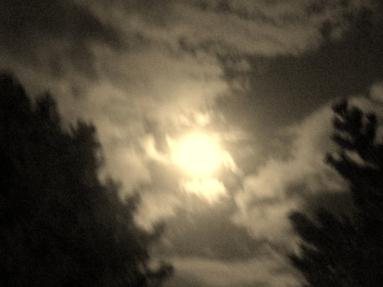 moonlight in vt by anne averyt
