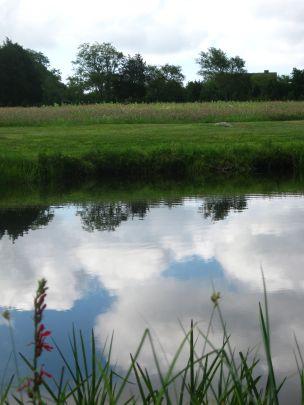 still pond