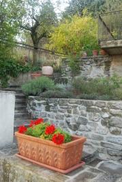 Letizia's garden steps