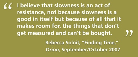 slowness as resistance