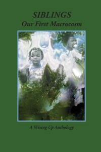 front cover of the new book