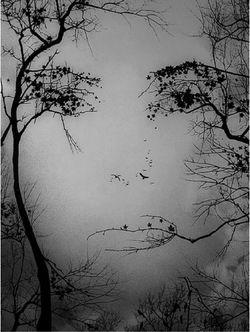 imagination - Caleb Pirtle
